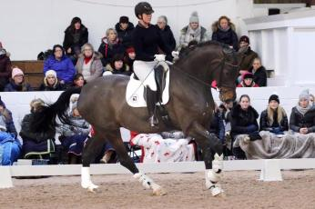 Demo rider at BD Young Horse Forum Feb 2019