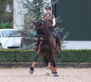 Jack Training at Carl Hesters in March 2019
